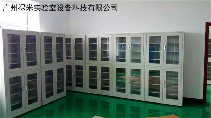 禄米实验室物品储存柜有哪些产品?