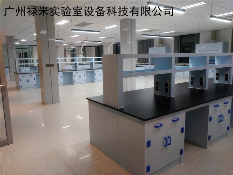 化工厂PP实验室家具案例