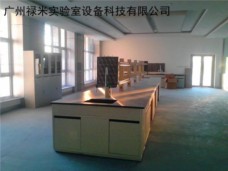 禄米实验室实验台的发展和创新